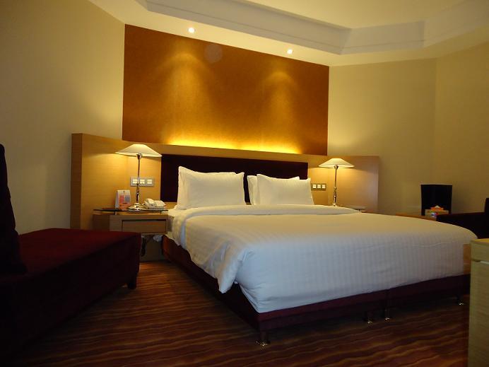 Azadi Hotel 5*