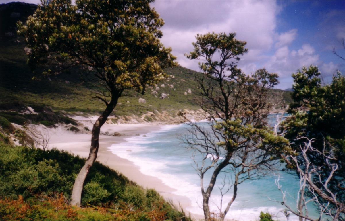 Tour della Tasmania