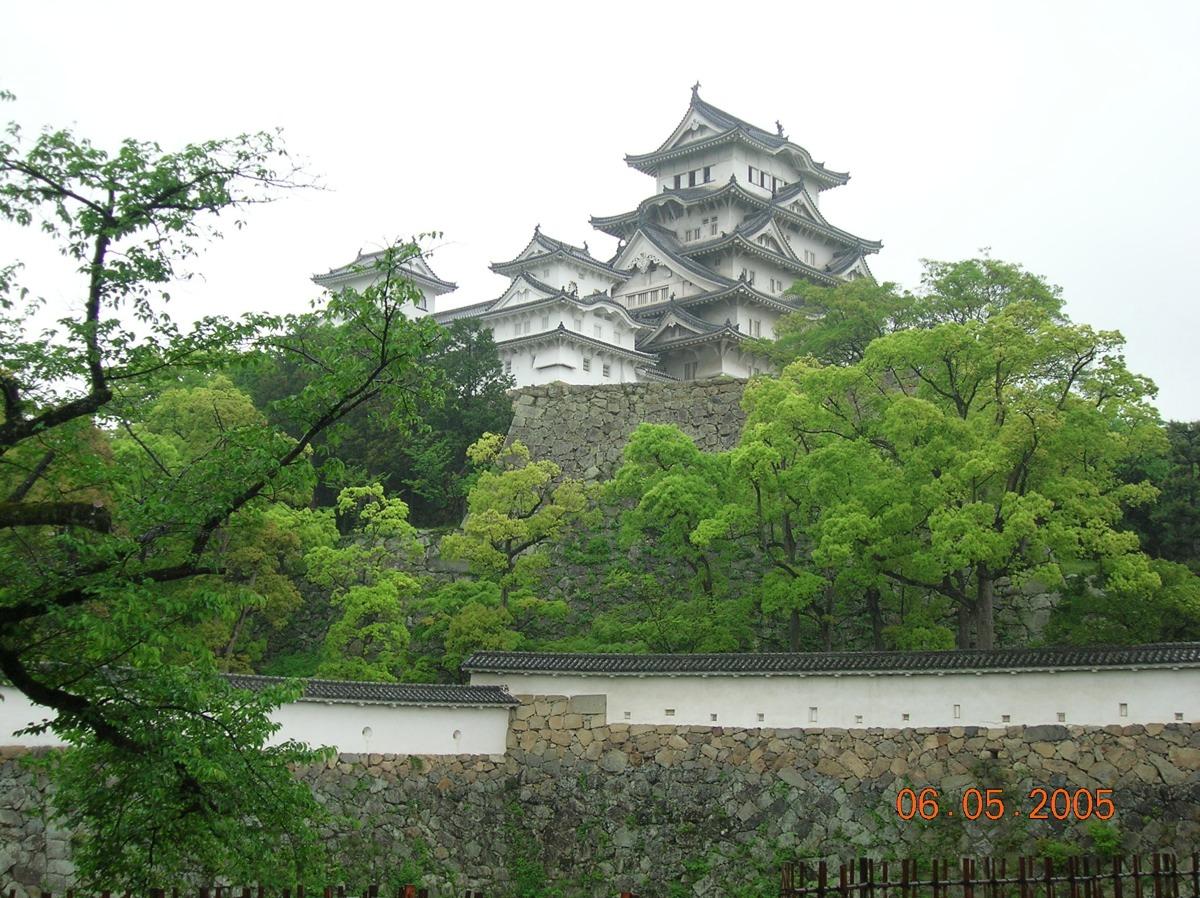 Esperienza nelle terme tradizionali Onsen