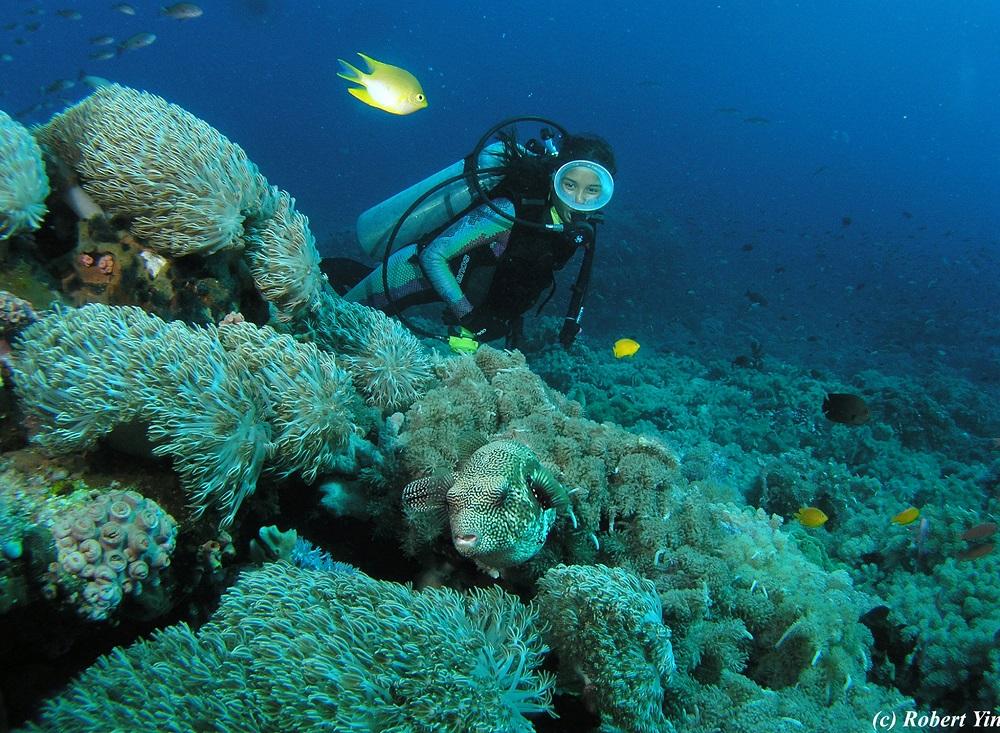 L'isola di Cebu e giro nell'arcipelago delle Visayas