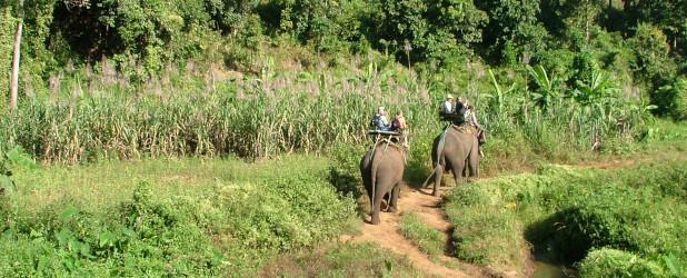 Safari e visita alle grotte di Kui Bari con trekking