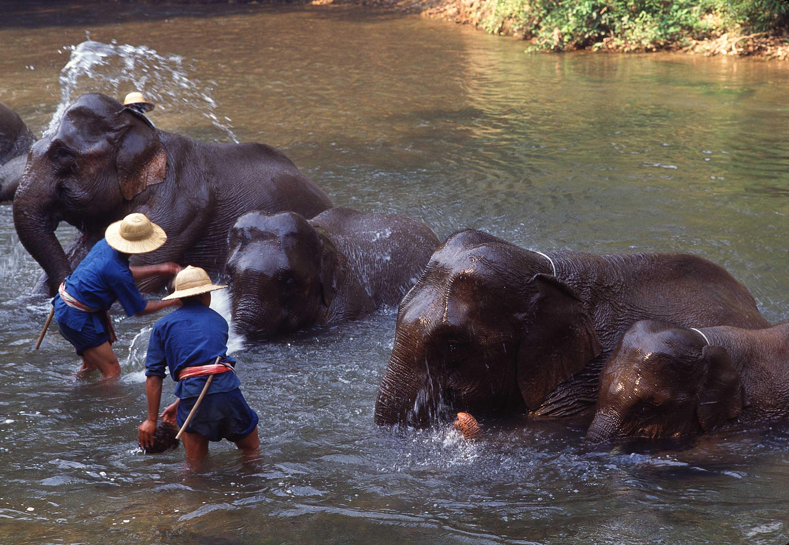 Tour Kanchanaburi partenza ogni mercoledì da Bangkok
