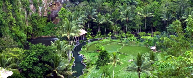 Mistica Bali  tour privato in italiano da Ubud