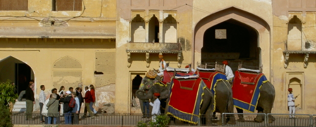 Discovery Rajasthan tour collettivo in italiano