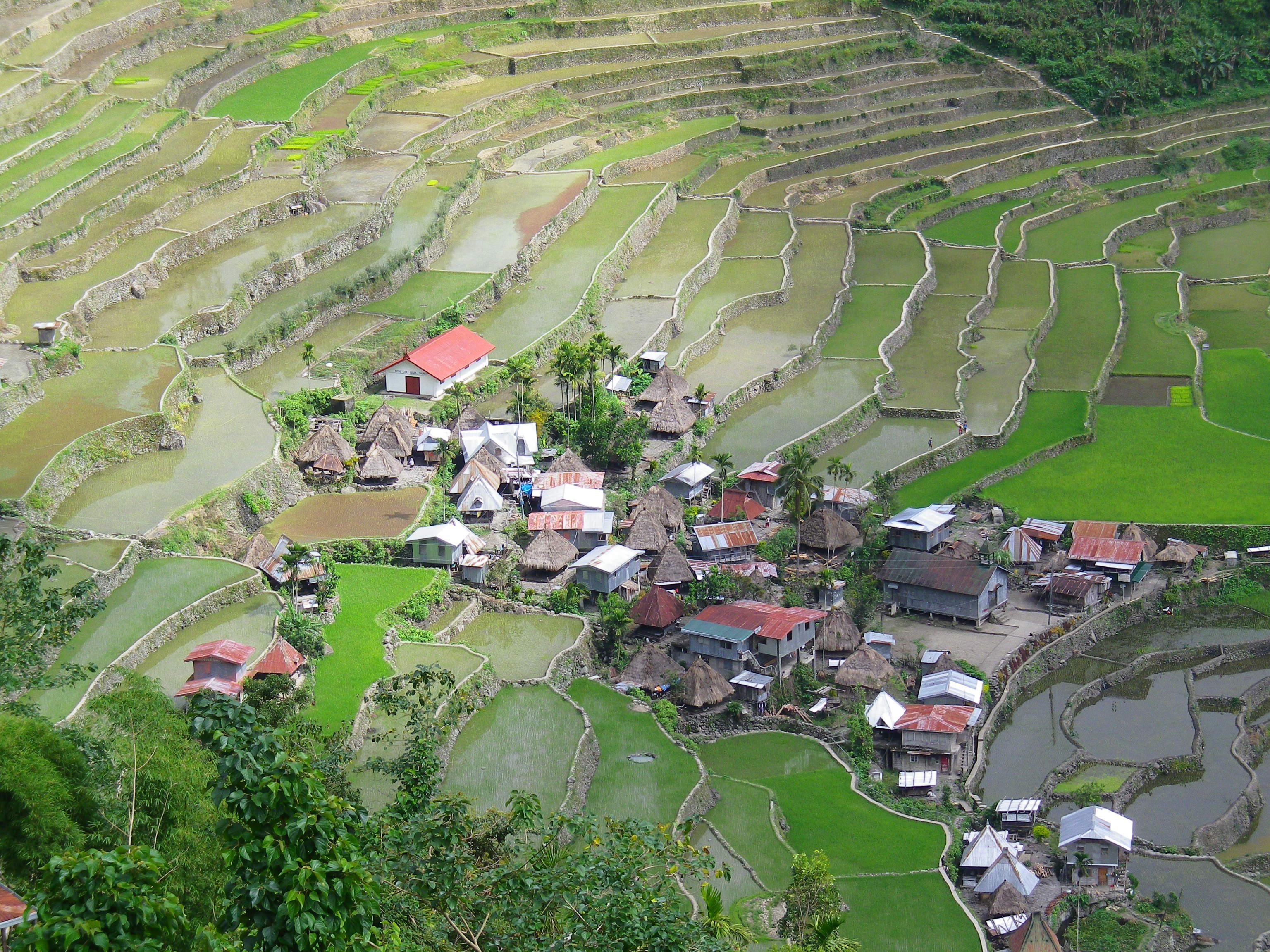 Tour dell'Isola di Luzon passando per Banaue - Sagada - Vigan