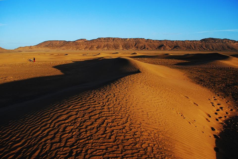 Tour Marrakech, Valli, Oasi e deserto