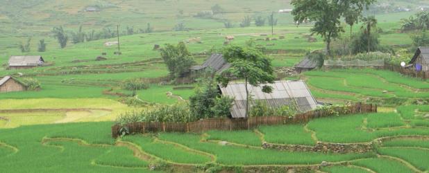 Escursione da Ho Chi Minh a Cu Chi e Tay Ninh