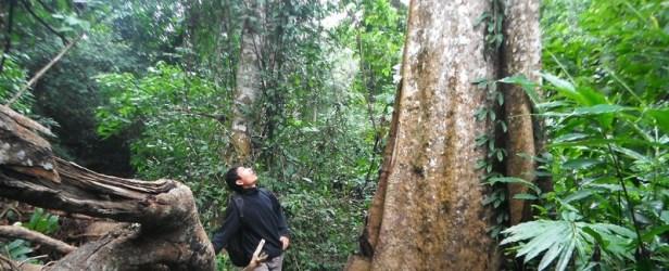 Alla ricerca delle hilltribe nella giungla
