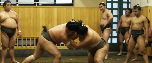 Sumo training experience