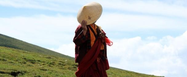 Pregando con un Lama