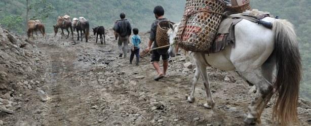 Vita rurale bhutanese